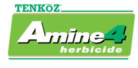 Amine 4