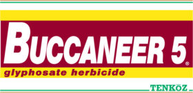 Buccaneer 5